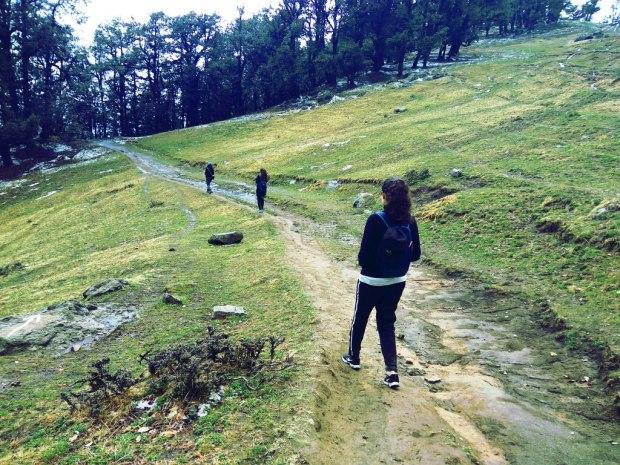Nag Tibba Trails